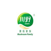 川野新万博平台